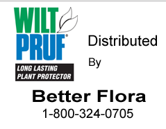 Wilt Pruf from Better Flora
